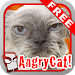 Download Angry Cat Free! 1.075 APK