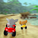Download Beach Jerry Racing and Cat 1.0 APK