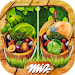 Download Find the Difference Gardens – Casual Games 2.1.1 APK