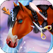 Download Horse Caring Mane Tressage 1.0.12 APK