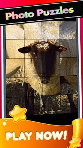 screenshot of Sheep Home Pictures-Baby Sheeps Puzzle Game version 1.1.1