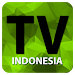 TV Online Indonesia Full HD